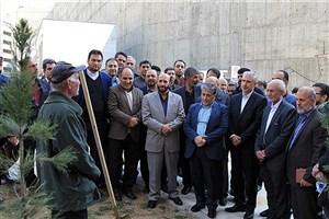 73 اصله نهال در دانشگاه آزاد اسلامی کاشته شد+ عکس