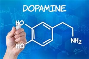دوپامین یک مولکول بسیار مهم و همه کاره در بدن