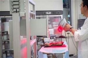 بهبود زخمها با زیست پرینتر متحرک