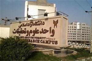 کسب مقام 143 دانشگاه ایرانی در رتبهبندی سایمگو/ واحد علوم و تحقیقات از وزارت بهداشت پیشی گرفت