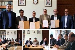 نخستین مرکز نوآوری و شتابدهی تخصصی سینمای ایران راهاندازی میشود