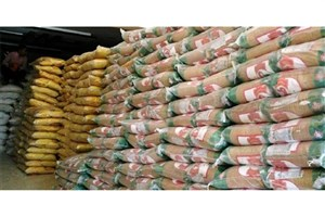 ۸۶ تن برنج احتکار شده در منطقه کن کشف شد