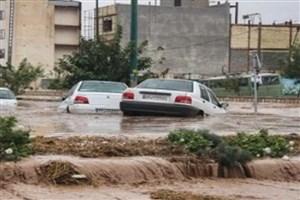 دیه قربانیان سیل شیراز بعد از تعیین مقصر پرداخت میشود