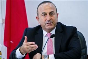 ترکیه برخی از کشورهای عربی را به ترسو بودن متهم کرد