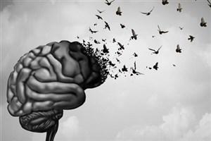 امکان جوان سازی مغز میسر شد