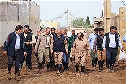 بازدید دکتر طهرانچی از امدادرسانی به شهر سیل زده پلدختر