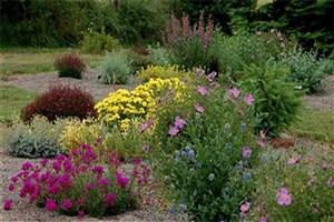 ورود به دنیای پر رمز و راز و عطرآگین گیاهان دارویی