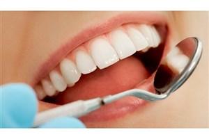 دندان دردتان تقصیر نوتروفیل هاست