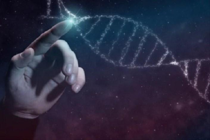 ژنتیک