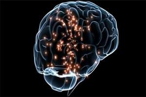 مغز در سنین مختلف قدرت انعطاف پذیری دارد