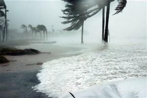 گرمایش آب و هوا علت طوفان ماریا