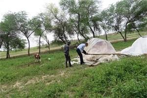اسکان  اهالی سیلزده شوش در قسمتی از محوطه تاریخی شوش+ عکس
