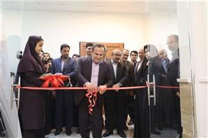افتتاح نمایشگاه شکوفایی هنر در نگارخانه شرق تهران به مناسبت هفته مشاغل