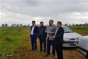 بازدید جوانمرد از اماکن ورزشی واحد های دانشگاه آزاد استان مازندران