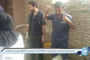 اعزام تیم تخصصی دامپزشکی دانشگاه آزاد به مناطق سیل زده خوزستان