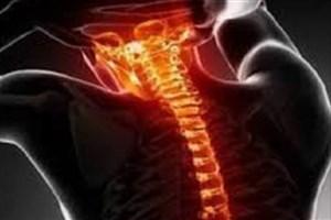 تاثیر سن اهدا کننده روی سلول درمانی آسیب های نخاعی
