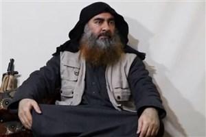 رهبر داعش زنده است