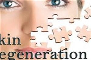شناسایی دو ترکیب برای جوانسازی و ترمیم پوست