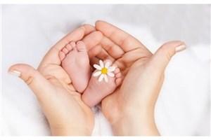 ارائه خدمات رایگان درمان ناباروری به افراد تحت پوشش بهزیستی