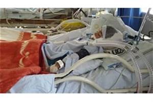 حمله سگ به کودک ۵ ساله در بوئینزهرا