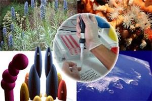 طرح های پژوهشی محققان کشور برای حمایت تصویب شد