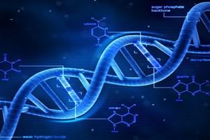 رشد سریع در حوزه نانوفناوری DNA آمفیفیلیک