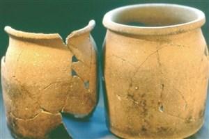 مردم قرون وسطی چه میخوردند؟