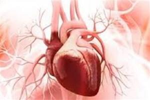 ژنتیک درمانی آسیب ناشی از حملات قلبی را بهبود می بخشد