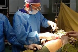 زمان طلایی ترمیم یا پیوندعروق حین جراحی ارتوپدی/چرا بیمار دچار قانقاریا میشود