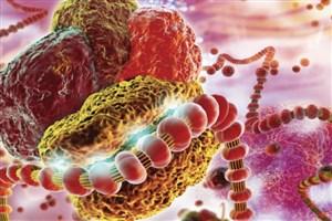 سرمایهگذاری ۸۰۰ میلیون دلاری برای توسعه داروی مبتنی برRNAi
