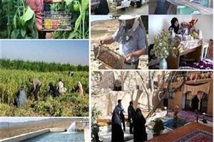 اشتغالزایی در مناطق محروم  با کاشت گیاهان دارویی