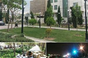 بهسازی روشنایی بوستان ها و کاهش مصرف انرژی