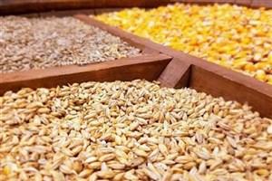 توزیع متمرکز نهادههای کشاورزی با یک ایده استارتآپی