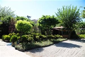 تبدیل  2هزار و 400 متر مربع فضای بی دفاع شهری  به نمایشگاه گل و گیاه