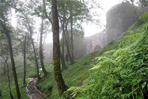 ایجاد مسیر های دسترسی و  آتش بر در بوستان جنگلی سرخه حصار
