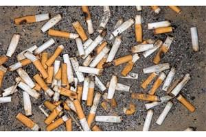 تجزیه فیلتر سیگار در طبیعت  ۳۶ ماه طول میکشد