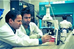 پذیرش دانشجو در 70 رشته دکتری تخصصی در دانشگاه آزاد خوراسگان