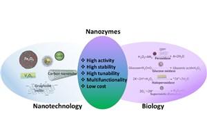 فناوری آنزیم مصنوعی، جهشی در دنیای کاتالیست
