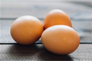 روزی سه تا تخم مرغ بخورید