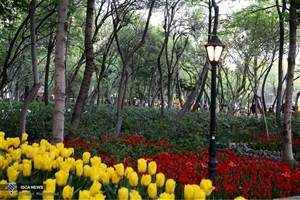 سرانه فضای سبز تهرانیها چقدر است؟