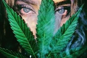 جهان در احاطه آتش سبز