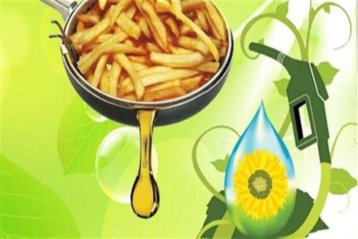 تولید گازوئیل زیستی با روغن پسماند خوراکی