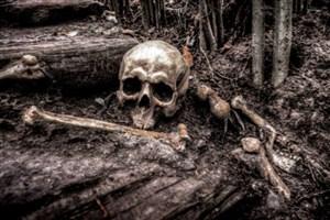 کشف استخوان های سامی در آب های فنلاند