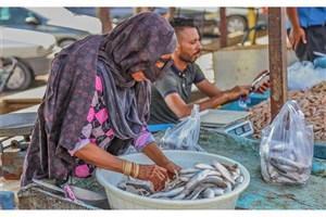 بازار ماهی فروشان جاسک بازگشایی شد