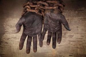 روشنگری نشریه دانشجویی در خصوص بردههای یک دانشگاه آمریکایی