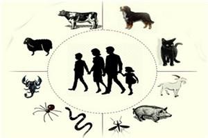 60 درصد بیماری های عفونی که به انسان ها منتقل می شوند، منشا حیوانی دارند