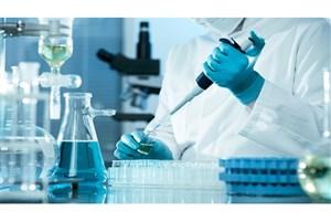 تاثیر نانوذرات طلا، با شکلهای مختلف، روی سیستم ایمنی بدن چیست؟