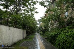 امروز در کدام جاده ها باران می بارد؟
