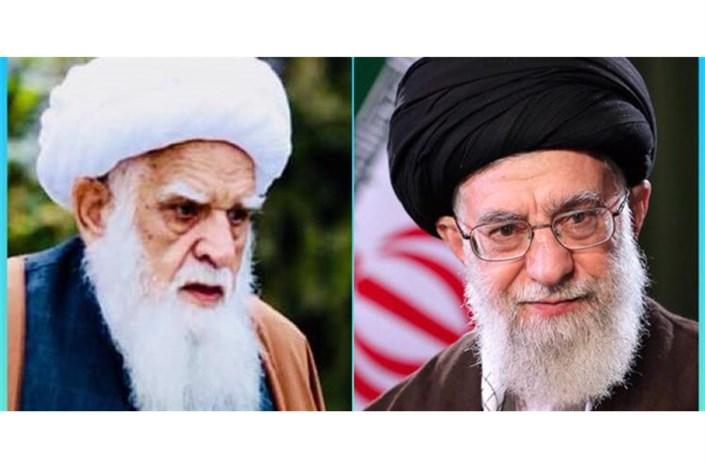عیادت فرستاده  مقام معظم رهبری   از آیتالله محسنی  در کابل