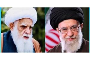 عیادت فرستاده ویژه رهبر انقلاب از مرجع تقلید شیعیان افغانستان+عکس